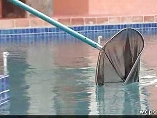 lady bottom copulates ebony poolboy